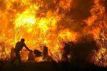 آتشسوزی رضوانشهر ۱۰۰ درصد مهار شده است،کندهها دودزایی میکنند