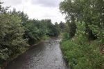 حال رودخانه های رشت خوب نیست