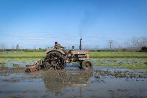 شخم اولیه ۸۲ درصد از اراضی کشاورزی لاهیجان، پیشرفت ۶۴ درصدی طرح تجهیز و نوسازی