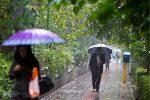 باران میهمان گیلانیها میشود