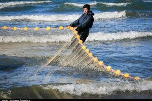 صید ماهیان استخوانی در دریای خزر ۸۱ درصد افزایش یافت