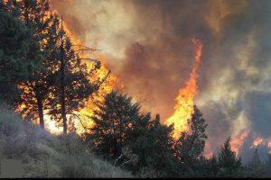 آتشسوزی جنگلهای چابکسر مهار شد