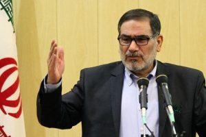 علت تاخیر در اعلام دلیل سقوط هواپیما از زبان شمخانی