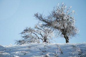 یخبندان در ارتفاعات گیلان،دمای هوا آخر هفته افزایش می یابد