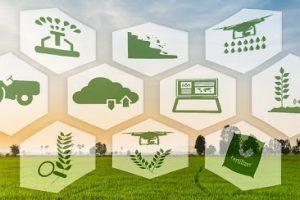 وظایف و اختیارات رئیس جمهور:ظرفیت های شرکت های دانش بنیان در حوزه کشاورزی