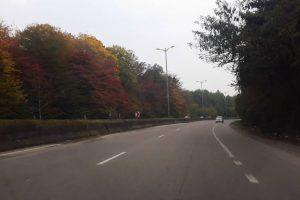 جاده زیبای گیسوم با درختان هفت رنگ