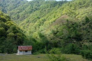 روستای فوشه، منطقه خوش آب و هوا در گیلان