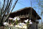 برگزاری جشنواره نوروزی در موزه میراث روستایی گیلان به قوت خود باقی است