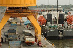 تعاونی های گیلان ۲۲ میلیون دلار صادرات انجام دادند