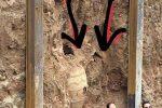 خمرههای کشف شده در شهر ری مربوط به آذوقه است /از «سکه» خبری نیست